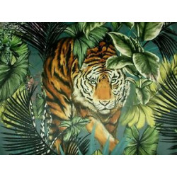 Tigre du Bengal  3 coloris